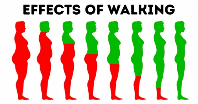 5 THINGS THAT HAPPEN TO YOUR BODY IF YOU WALK EVERYDAY