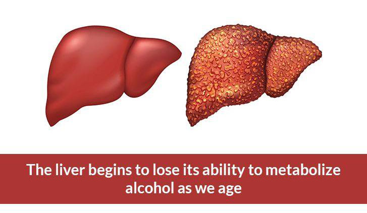 ALCOHOL, THE LIVER AND AGING