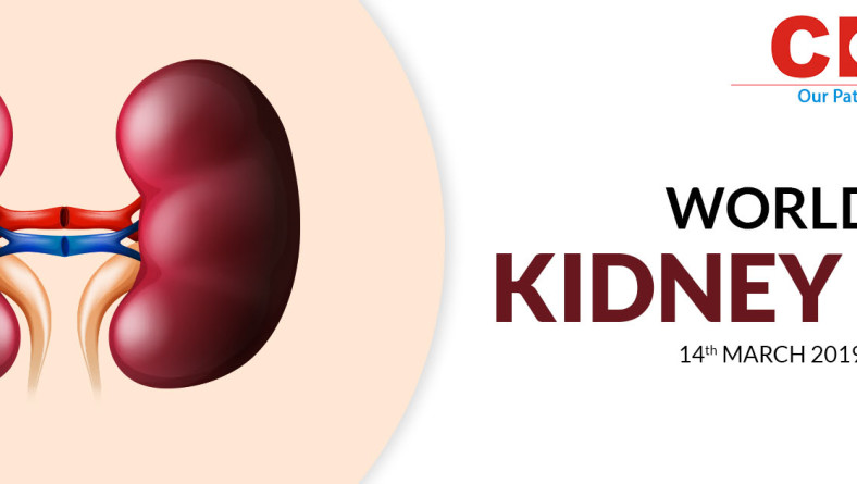 What You Can Do For Your Kidneys: The Eight Golden Rules